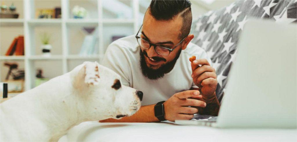 Estratégias de marketing para Pet Shops
