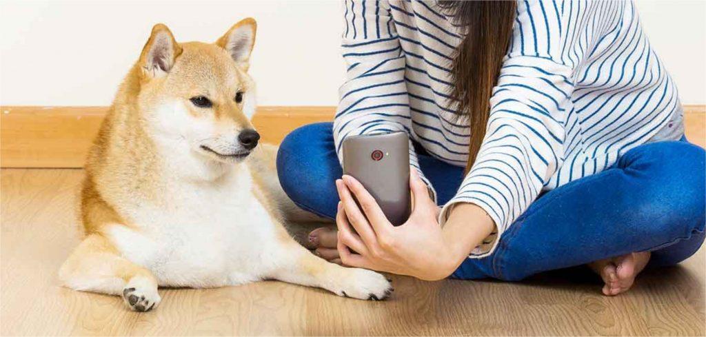 Estratégias de marketing para Pet Shops - Parte 3: aproximando-se dos clientes